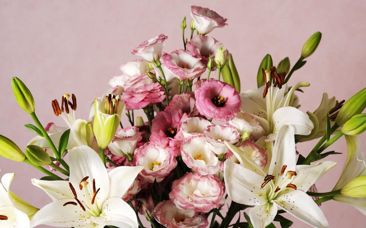 Votre atelier Floral sur Lannemezan